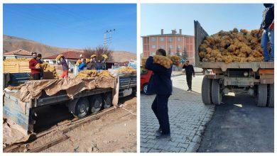 Photo of Bahşılı Belediyesinden Üreticiden Halka 28 Ton Patates Dağıtıldı