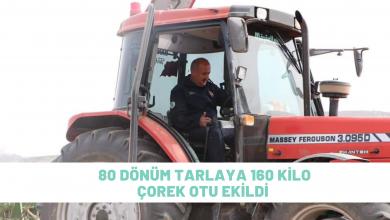 Photo of 80 Dönüm Tarlaya 160 Kilogram Çörek Otu Ekildi