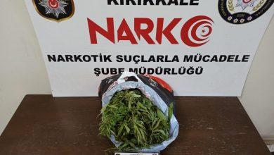 Photo of 1 kilo 410 gram esrar ele geçirildi
